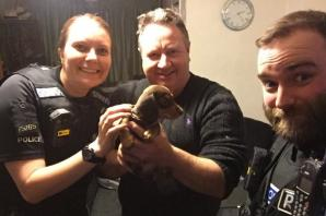 Stolen puppy Ralph reunited with his owners in Stanford-le-Hope